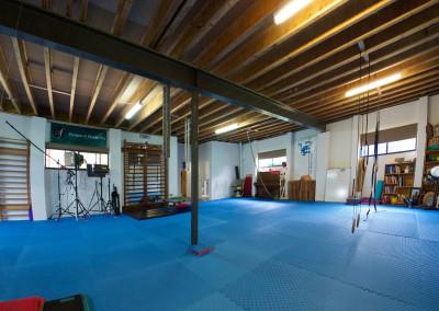 Monkey Gym – teaching space