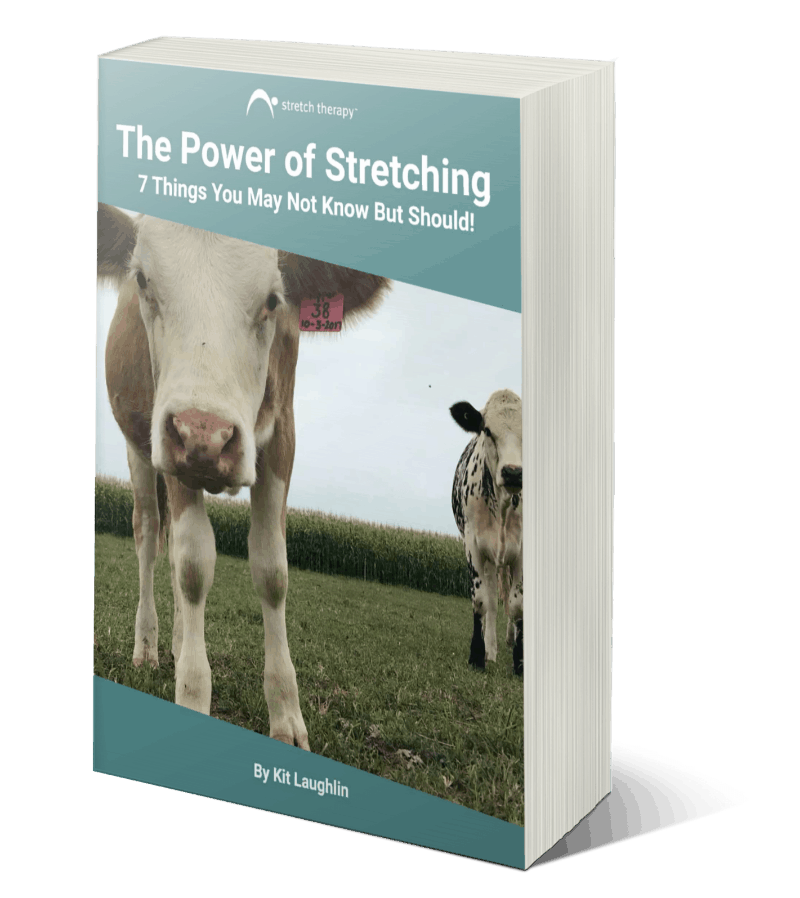 Power Of Stretching By Kit Laughlin Cover
